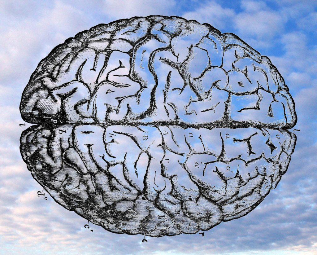 new-cloud-brain