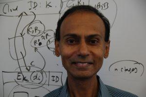 Srini Devedas, MIT - Image credit: Helen Hill